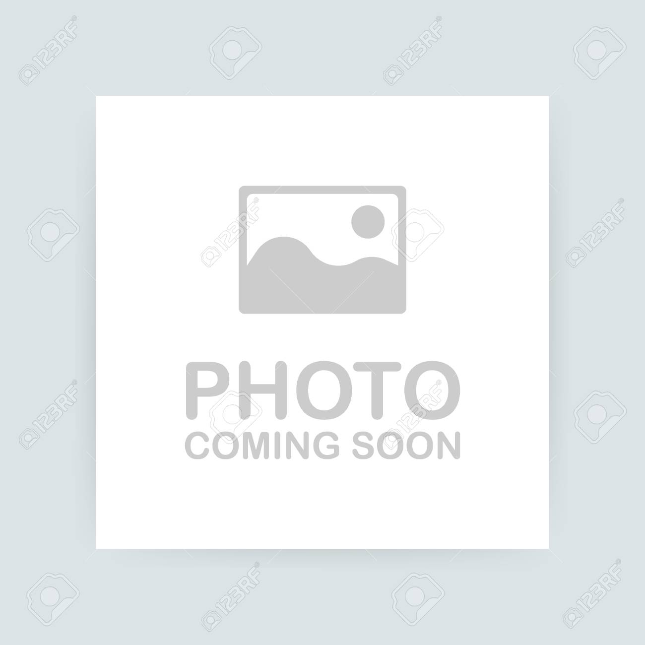 Photo coming soon. Picture frame. Vector stock illustration - 114951861