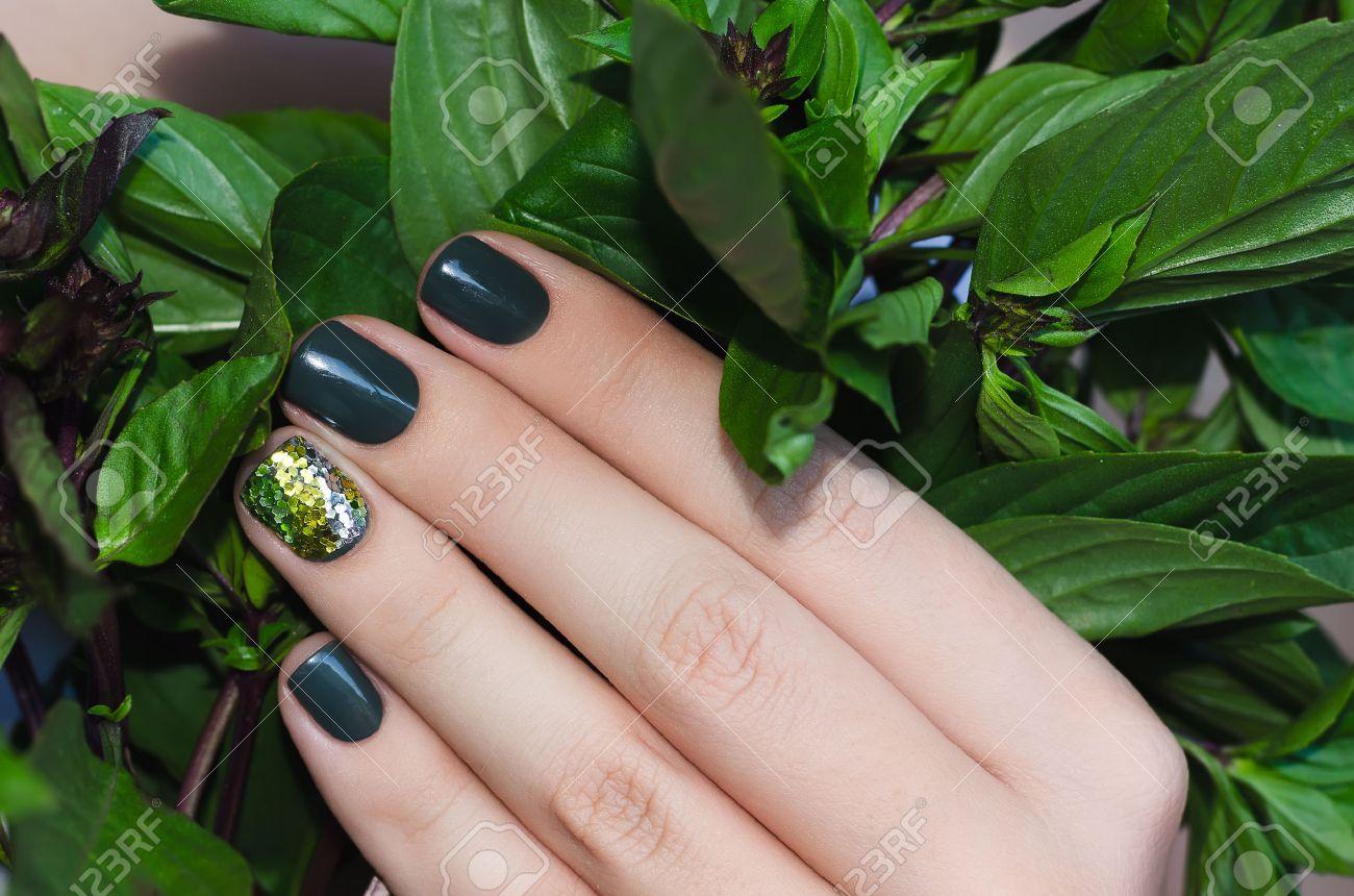 Albahaca en la mano femenina con un hermoso diseño de uñas de color verde oscuro