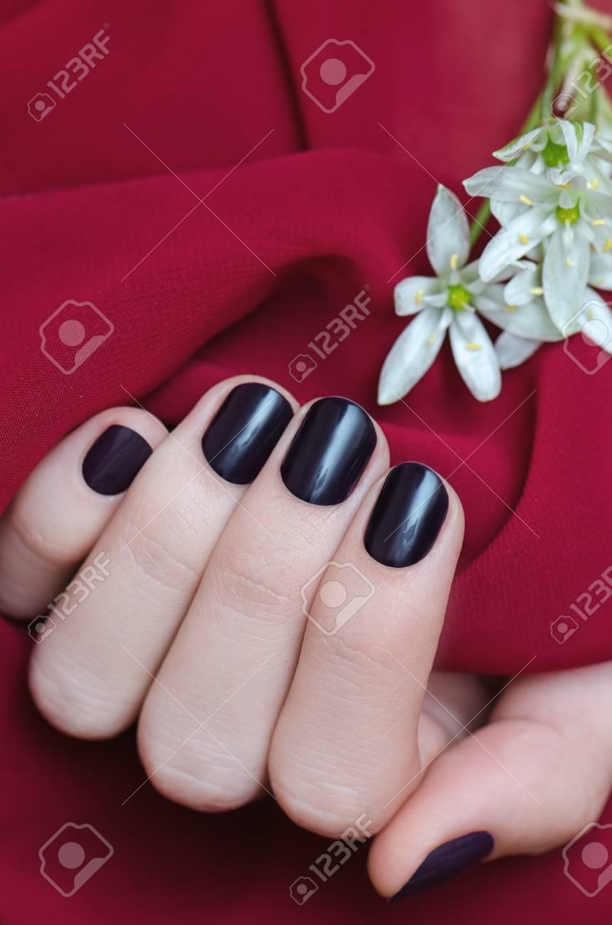 Beautiful Female Hand With Dark Purple Nail Design. Stock Photo ...