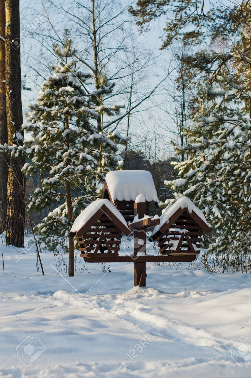 Bird feeder in the park covered with snow Stock Photo - 17466908