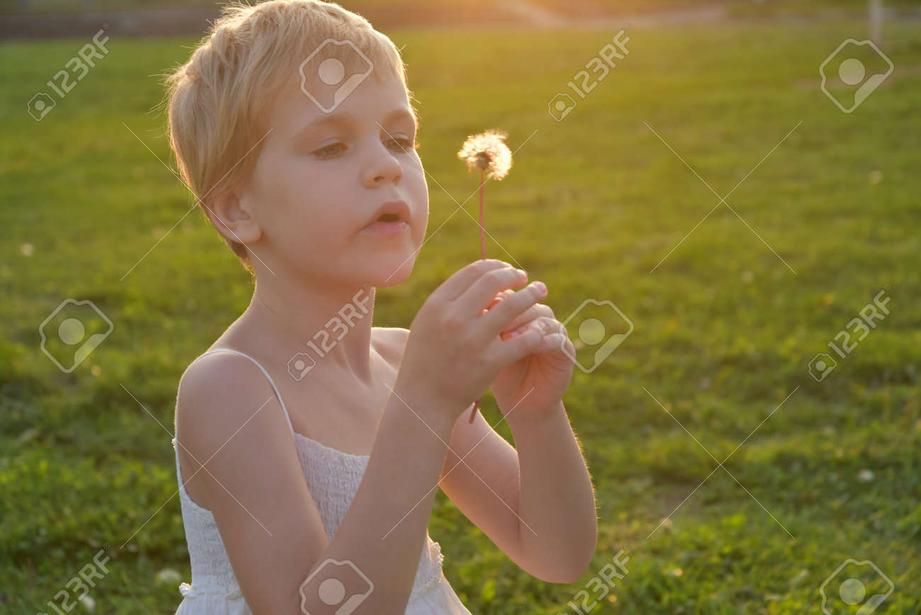 little girl looks at a fluffy dandelion. The rays of the setting sun, glare and backlight. The concept of childhood dreams and innocence - 168593049