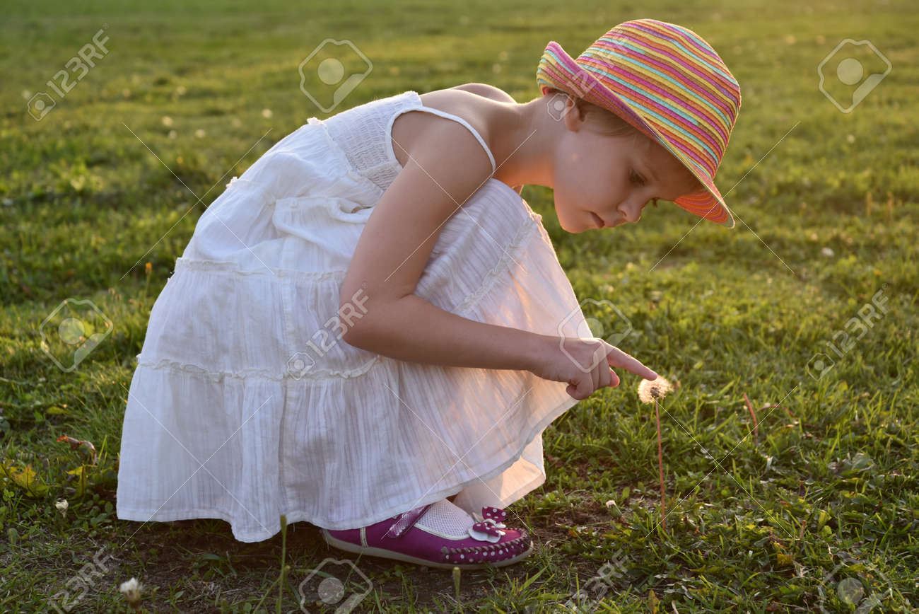 little girl looks at a fluffy dandelion. The rays of the setting sun, glare and backlight. The concept of childhood dreams and innocence - 168593151
