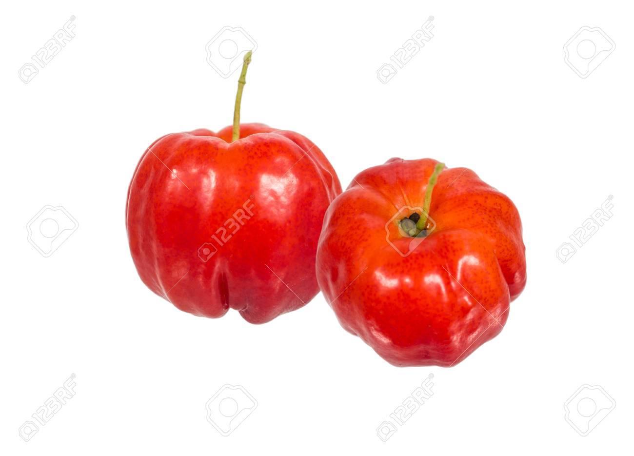 Acerola Fruit Image