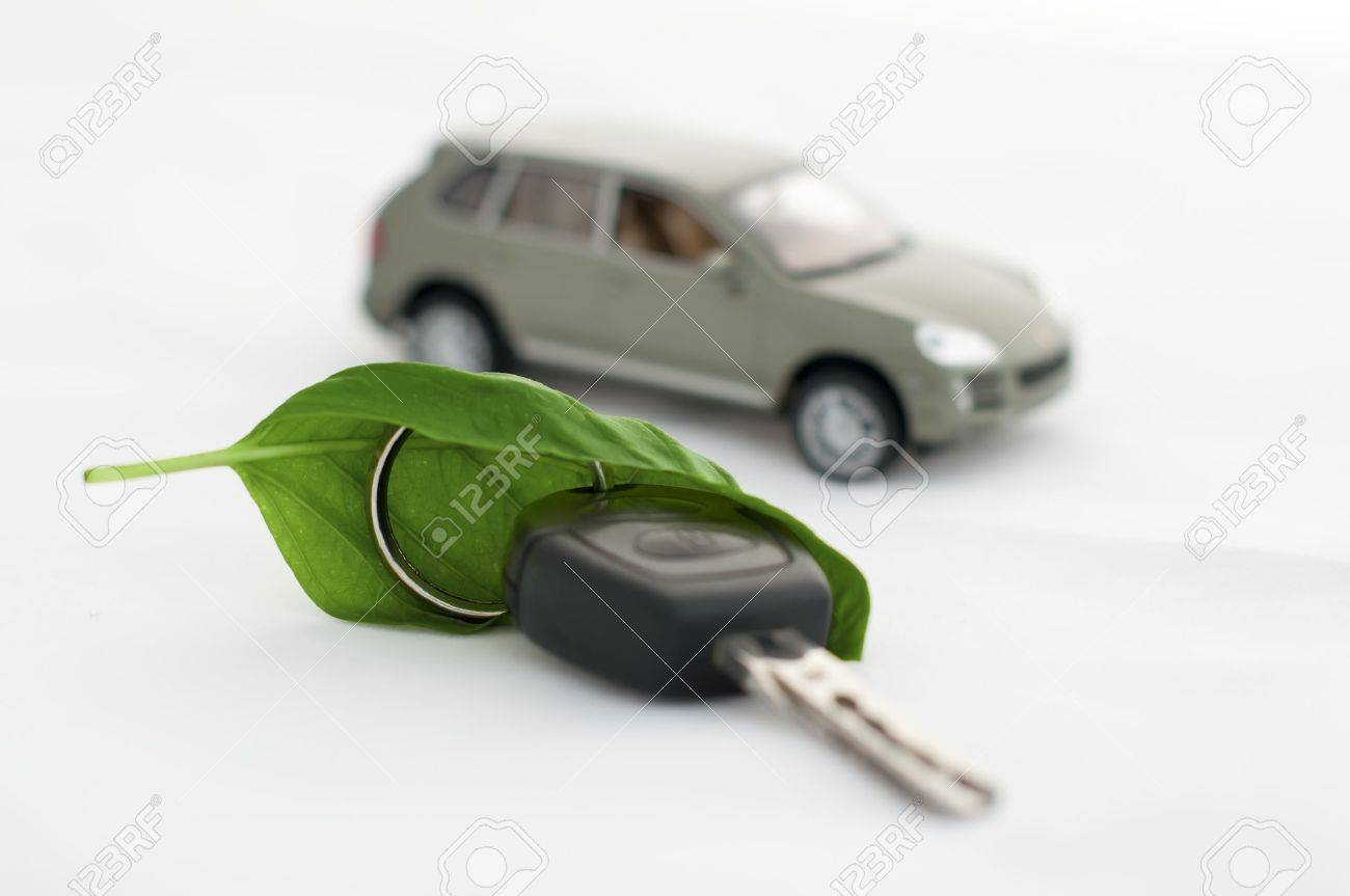 Green leaves and a car. Ecology conception. White isolated Stock Photo - 10754205