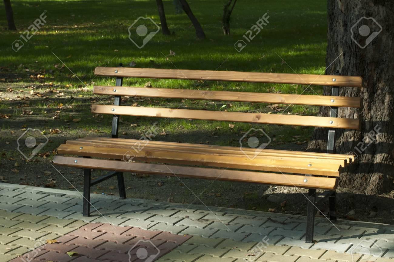 Park bench to tree Stock Photo - 11114407