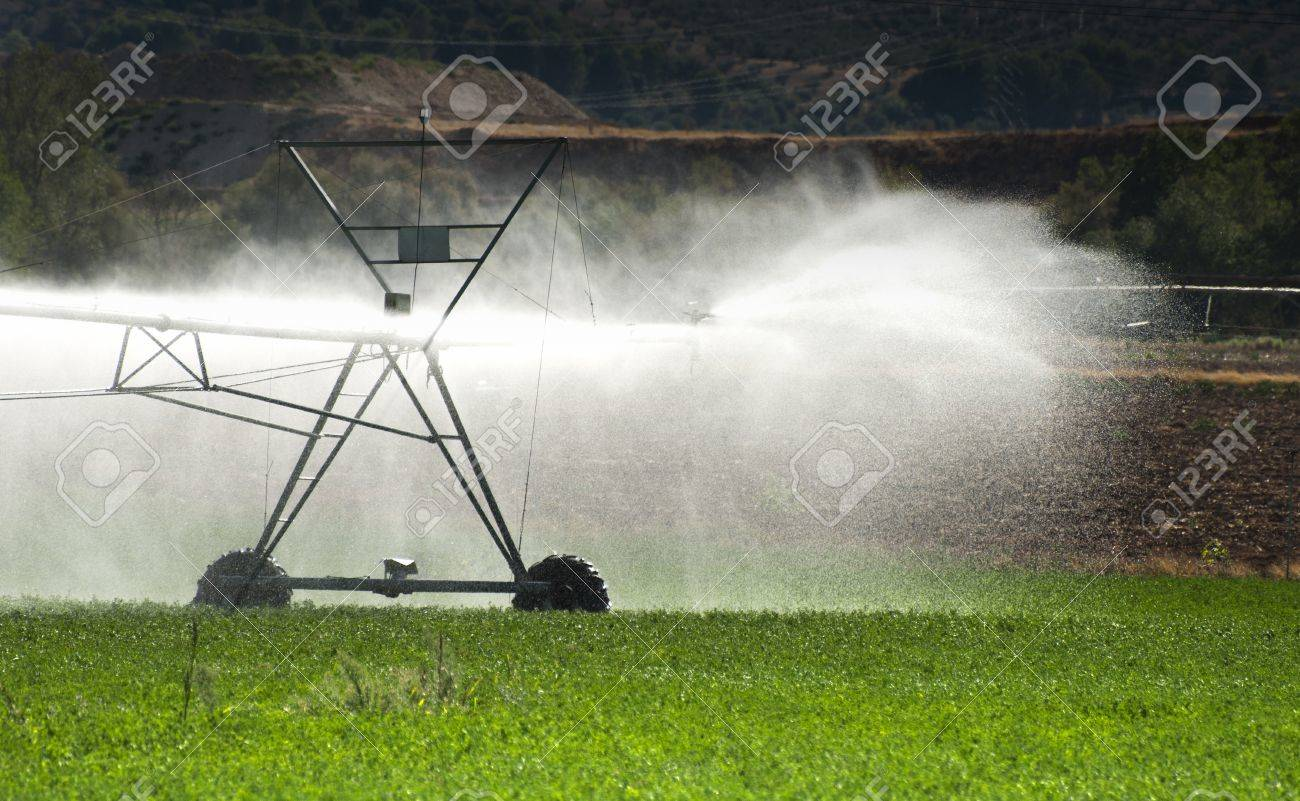 irrigation systems in agriculture stock photo - Irrigation Systems
