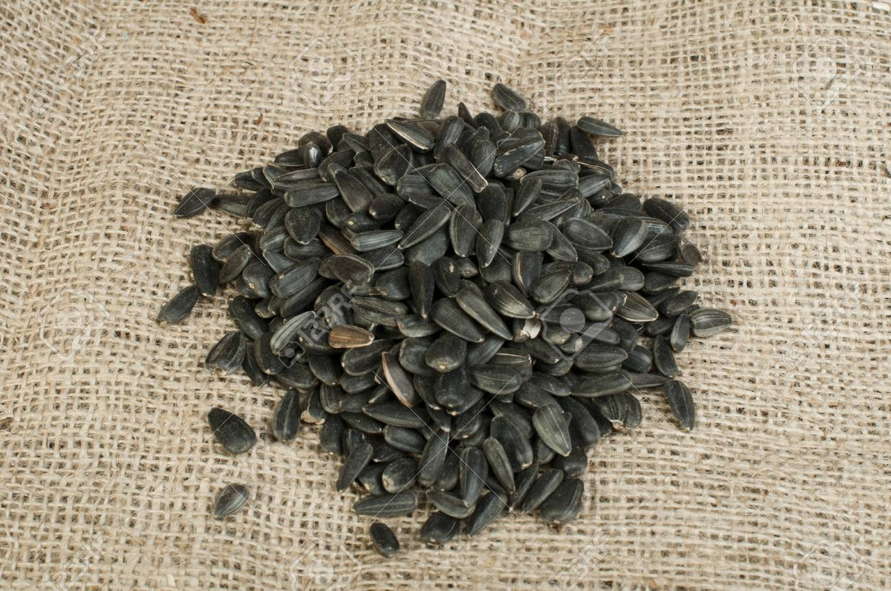 Sunflower seed on burlap brown background Stock Photo - 17268148