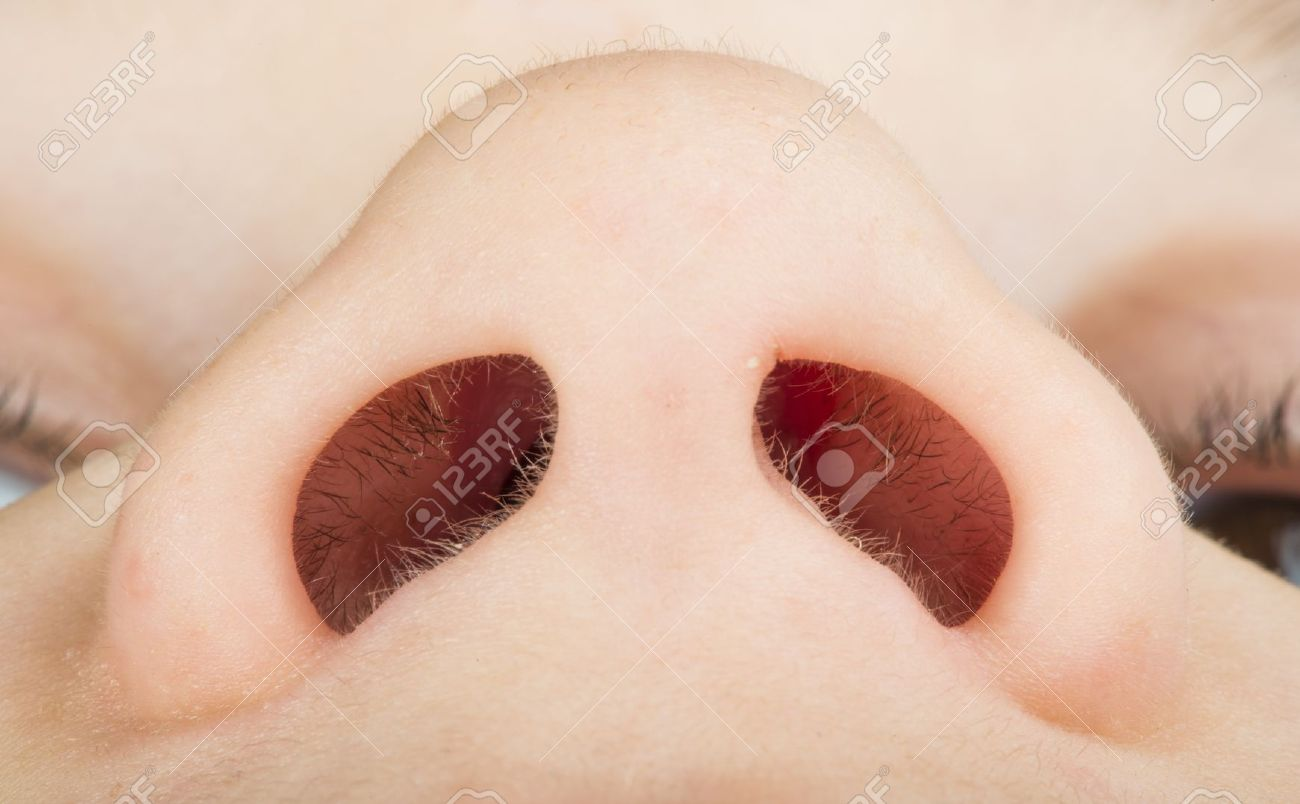 Human nose close up studio shot Lowest view point - 19971341