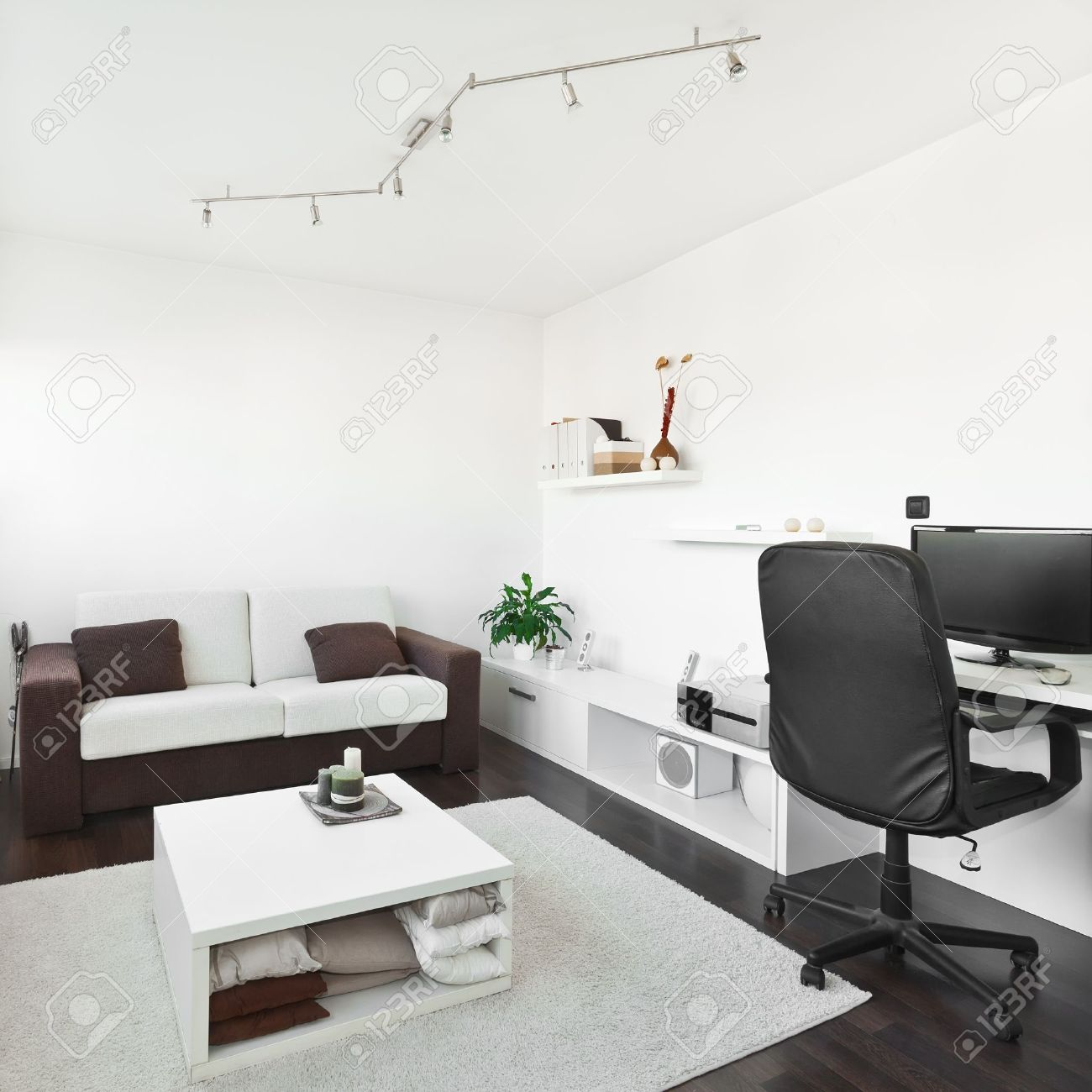 Modern Living Room With Computer Desk And The Screen, Sofa And ...