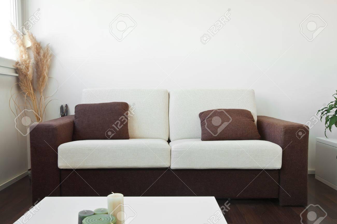 Blanc et canapé en tissu brun dans le salon avec des coussins marron