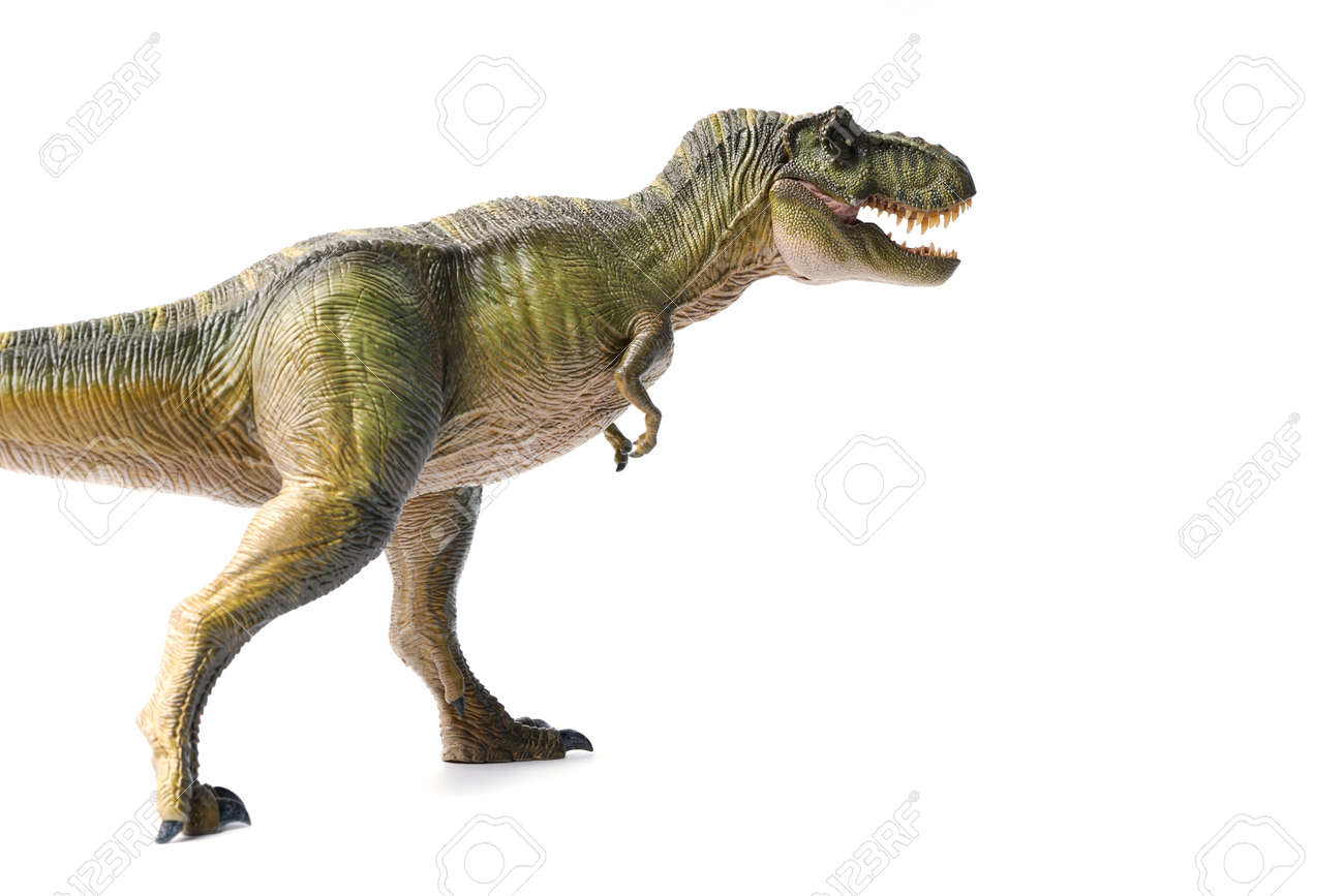 Tyrannosaurus rex dinosaurs toy green isolated on white background. closeup dinosaur and monster model . - 166354767