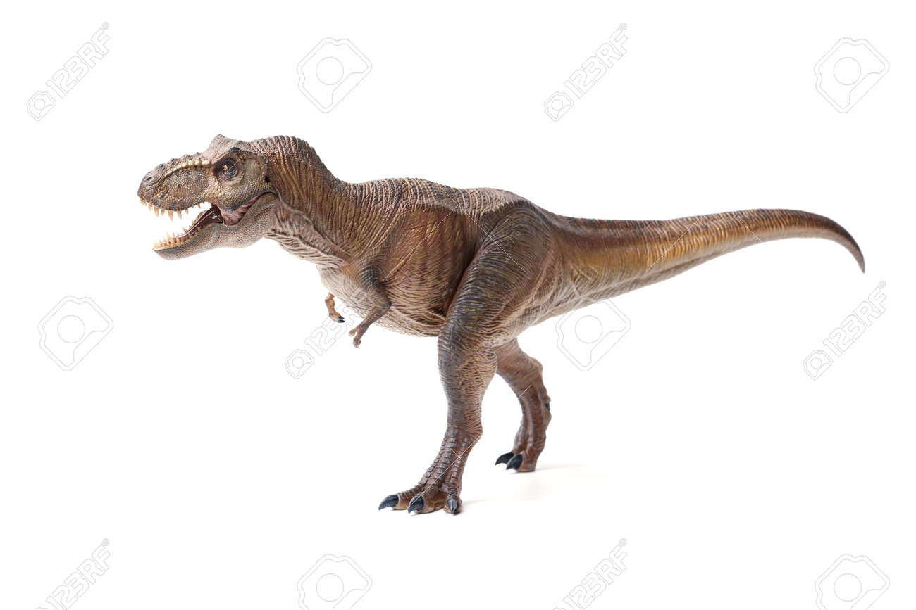 Tyrannosaurus rex dinosaurs toy brown isolated on white background. closeup dinosaur and monster model . - 166354773