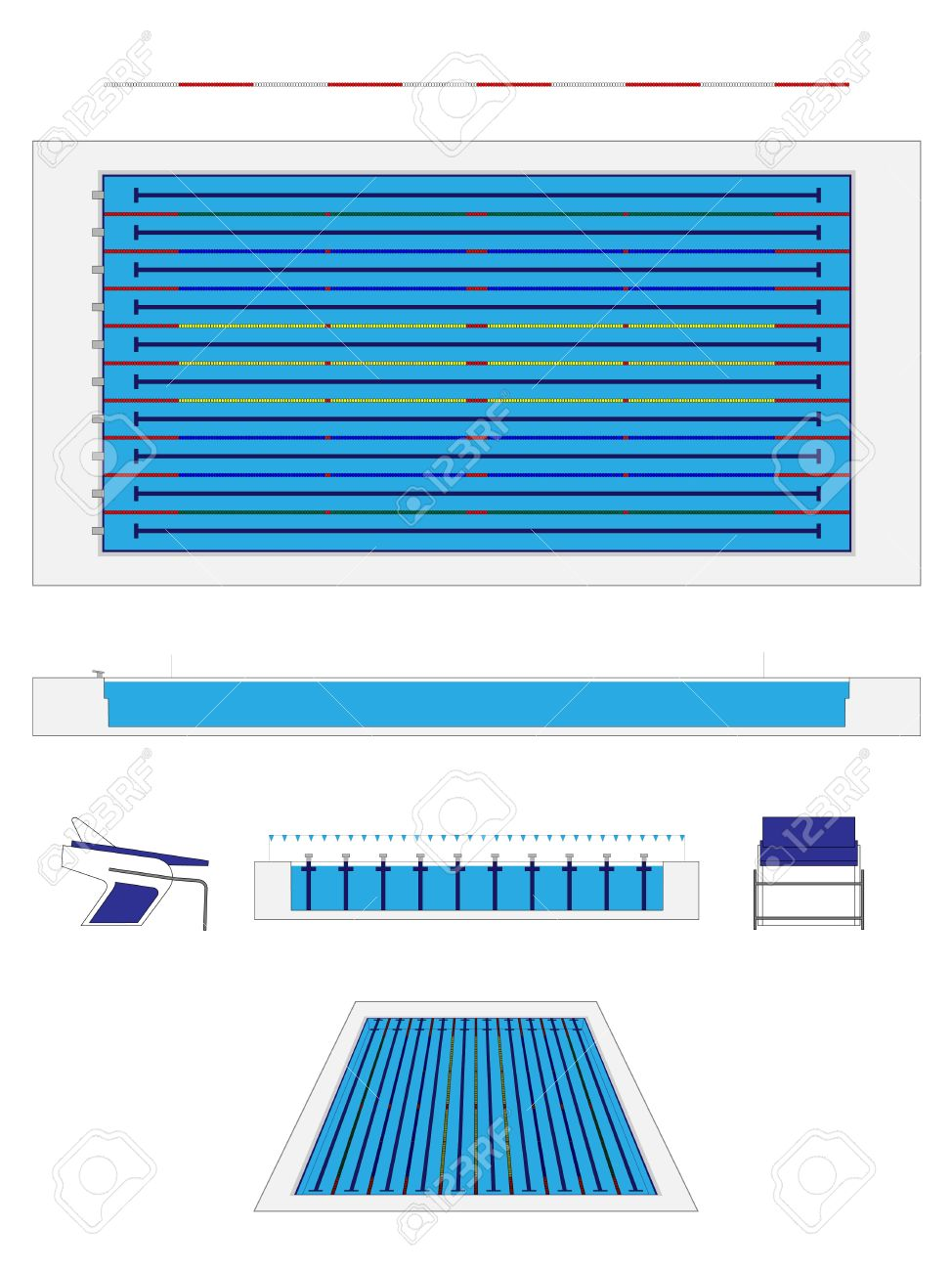 Olympic Size Swimming Pool Royalty Free Cliparts Vectors And