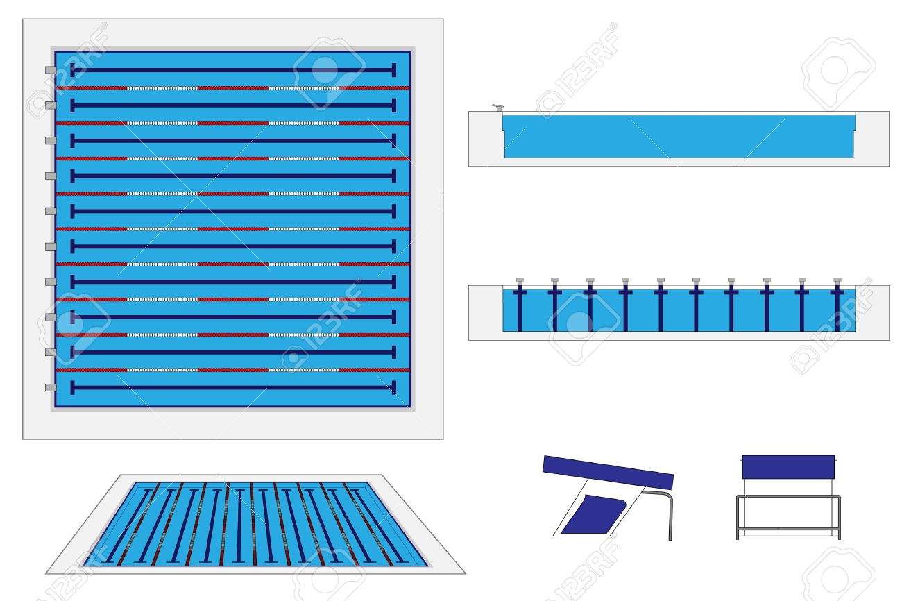 semi olympic-size swimming pool royalty free cliparts, vectors