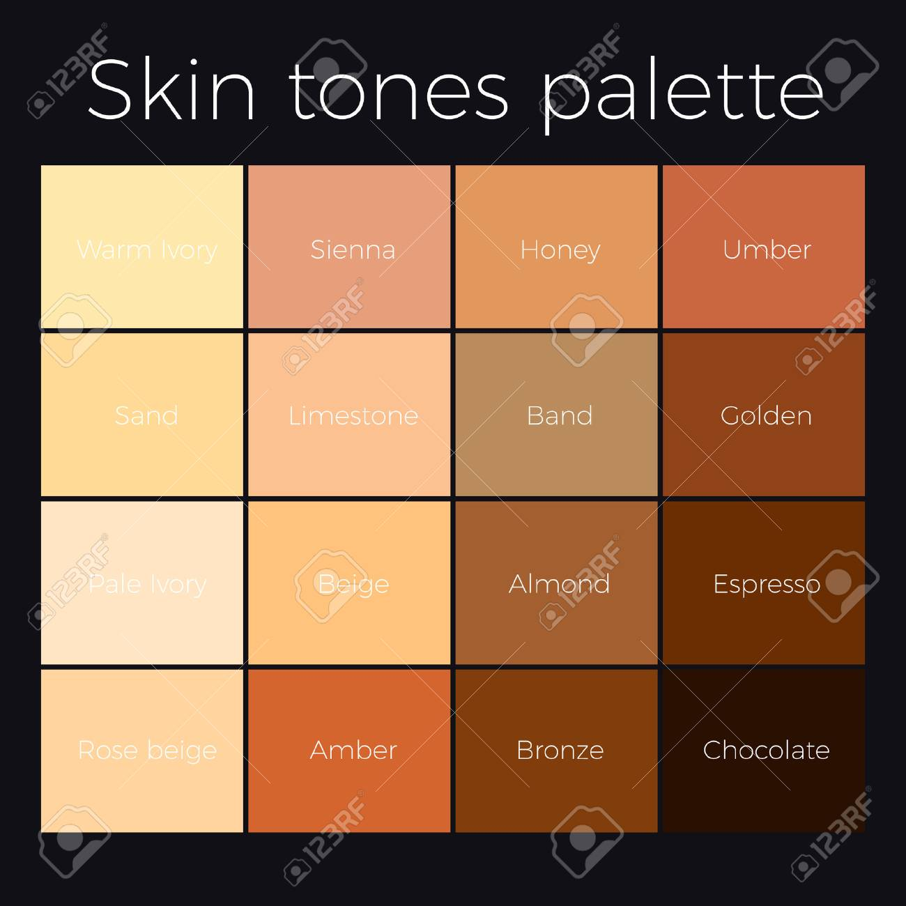 skin color chart: Skin tones palette vector skin color chart royalty free cliparts