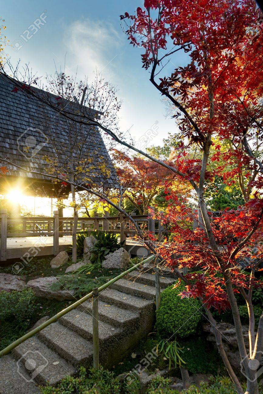 Multicolored Fall Foliage In The Fort Worth Japanese Gardens Stock ...