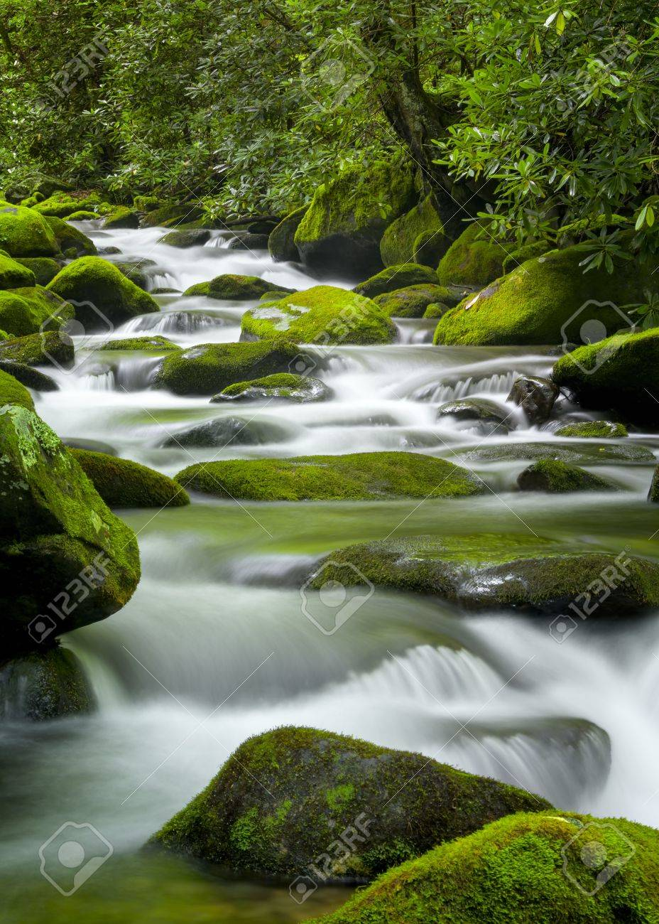 Silky water cascading over bright green moss-covered boulders in a Tennessee stream - 19014350