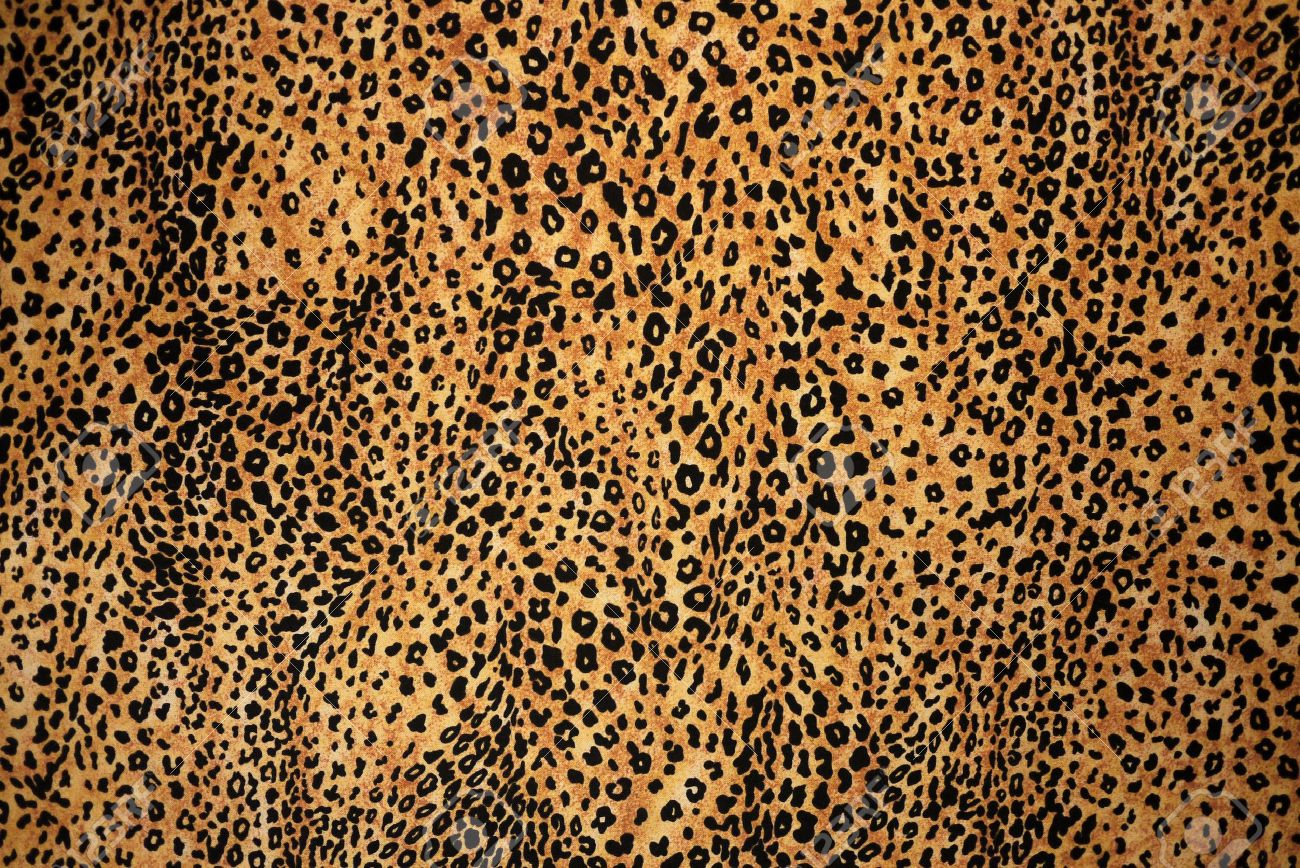 animal print background stock photo picture and royalty free image