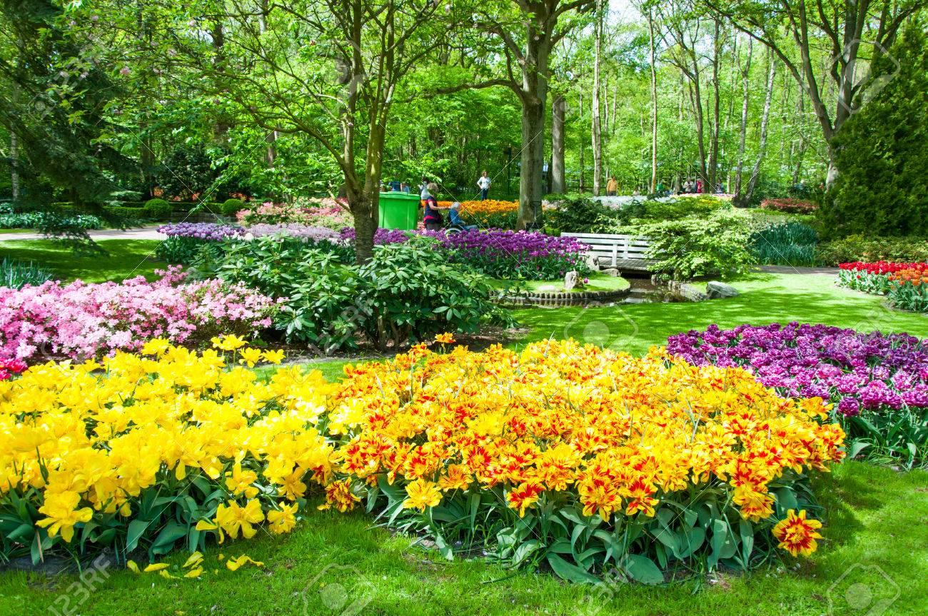 Rüyada Büyük Rengarenk Bir Çiçek Gül Bahçesi İçinde Görmek