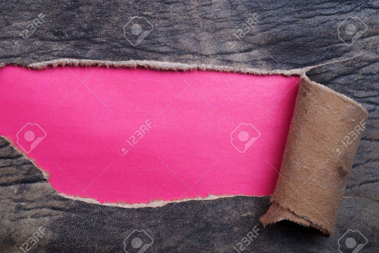 Torn Leather over a purple background Stock Photo - 13445129
