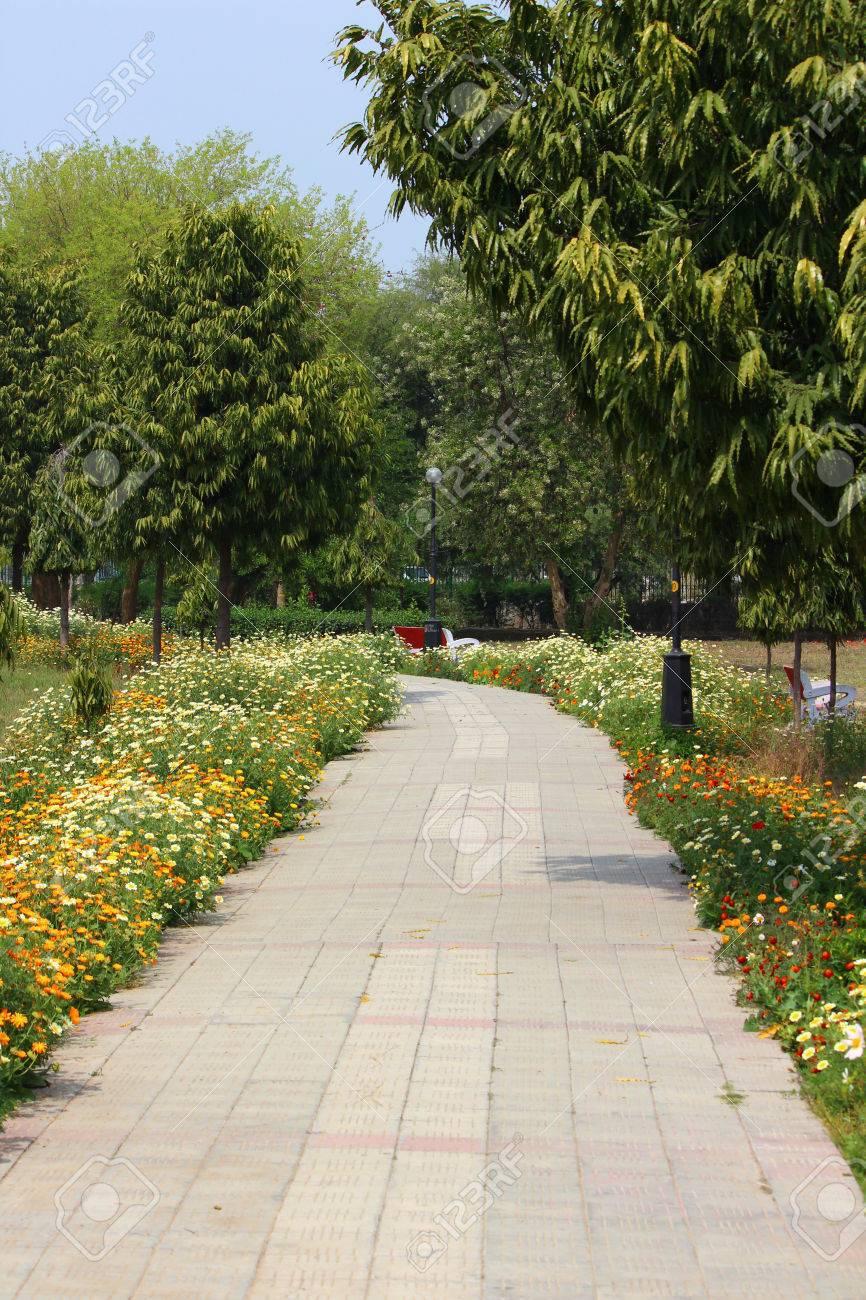 Japanese Park Rohini New Delhi During The Spring Season Stock