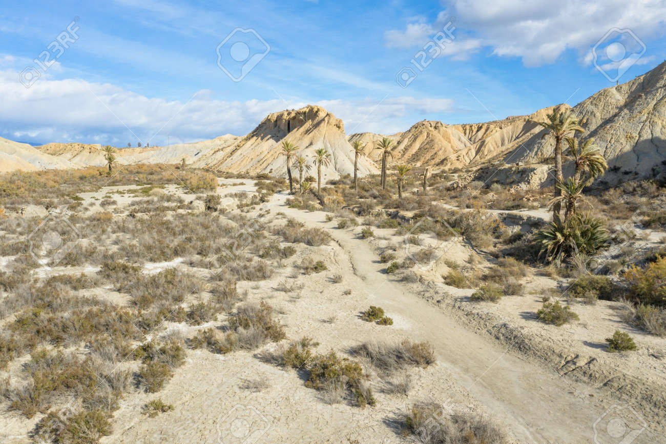 drone Aerial view of Tabernas desert landscape in Andalusia Almeria Spain Only desert in Europe - 165004149