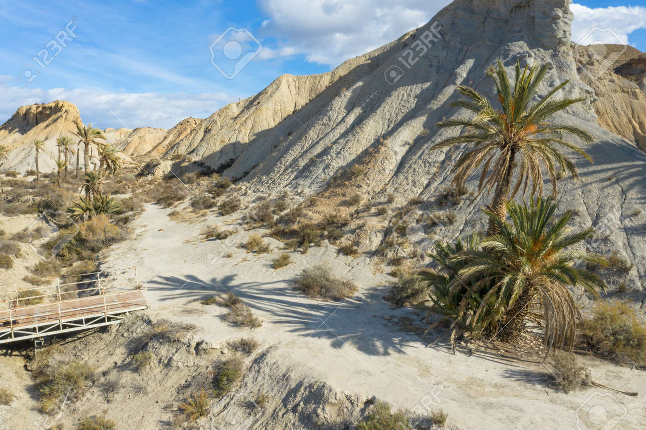 drone Aerial view of Tabernas desert landscape in Andalusia Almeria Spain Only desert in Europe - 165004159