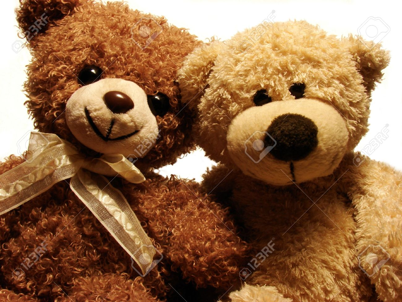 portret of two teddy-bears Stock Photo - 8324970