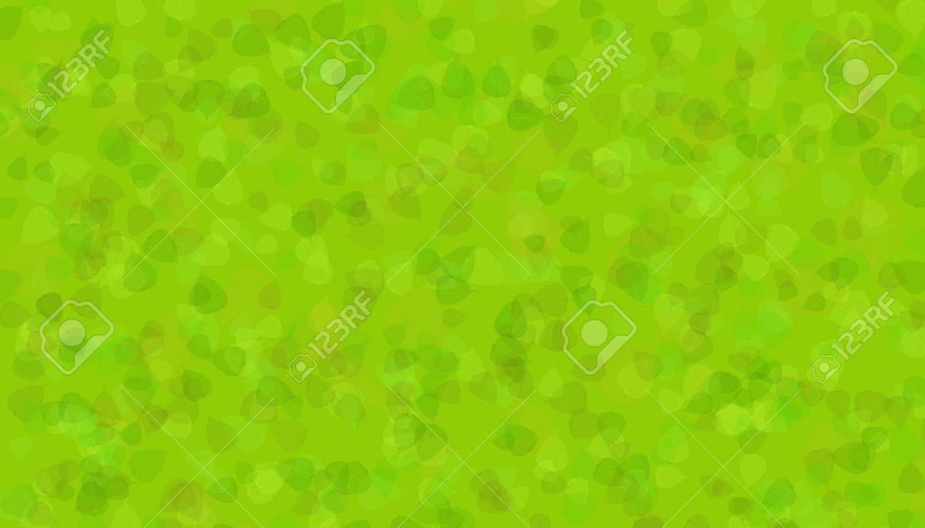 the colorful green leaves as a texture or background Stock Photo - 8573094