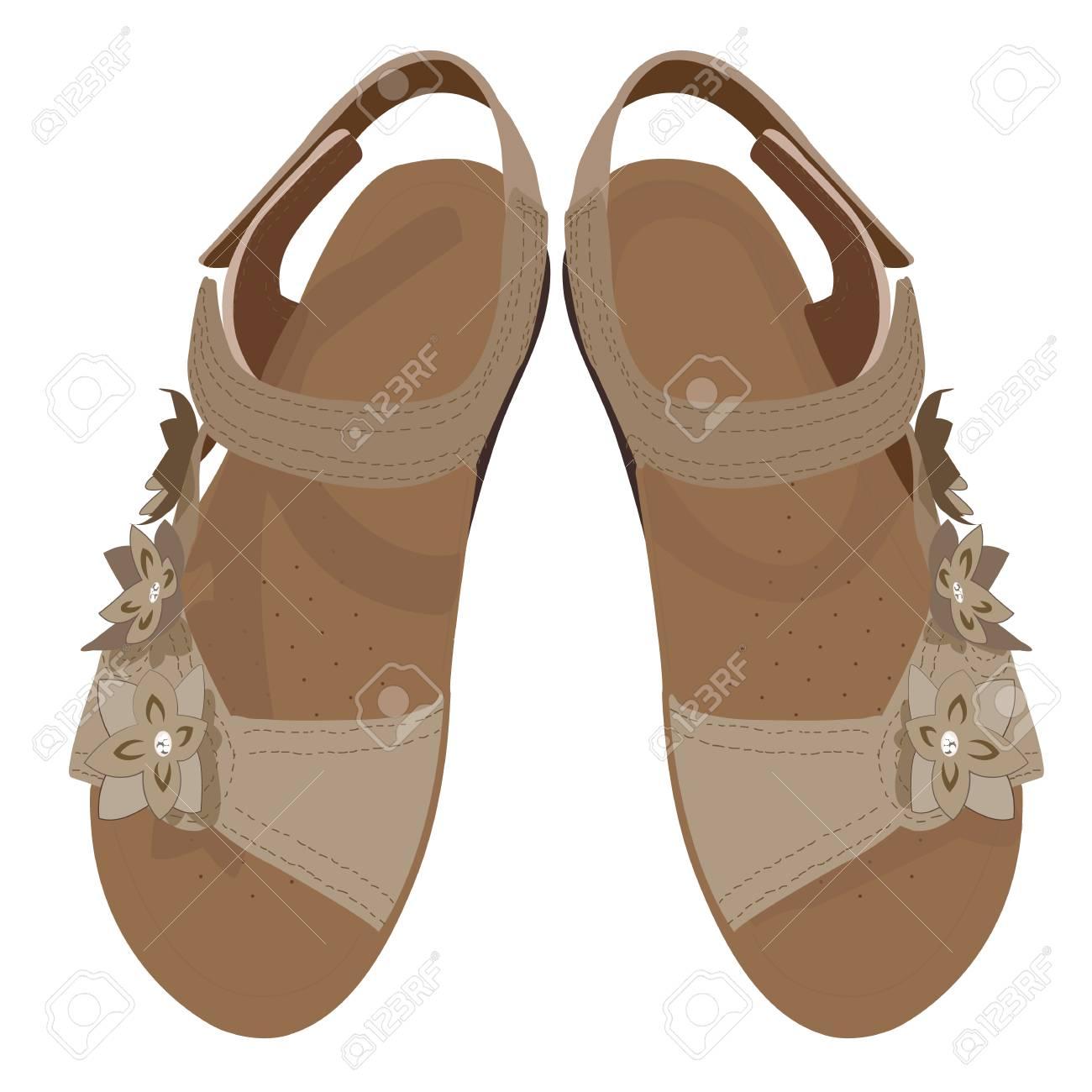 6e7f55515 Light Brown Sandals Vector