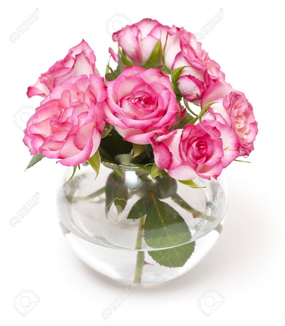 Rozen In Vaas.Roze Rozen In Vaas Op Wit Wordt Geisoleerd Royalty Vrije Foto