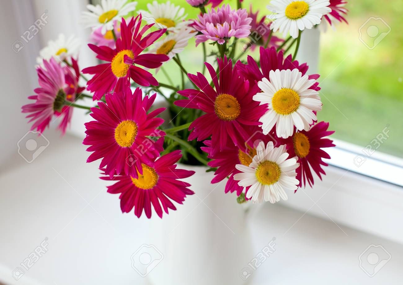 daisies on windowsill Stock Photo - 20200203