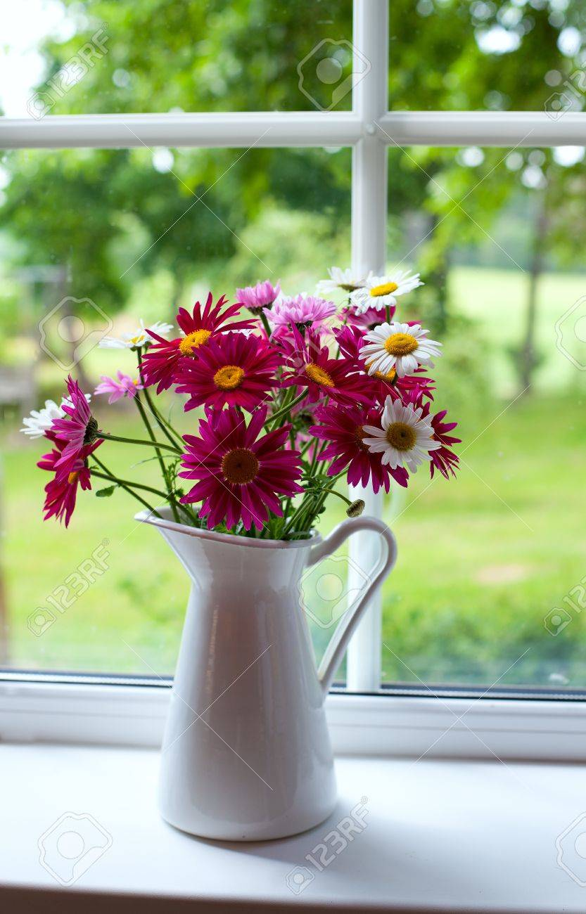 daisies on windowsill Stock Photo - 20785152