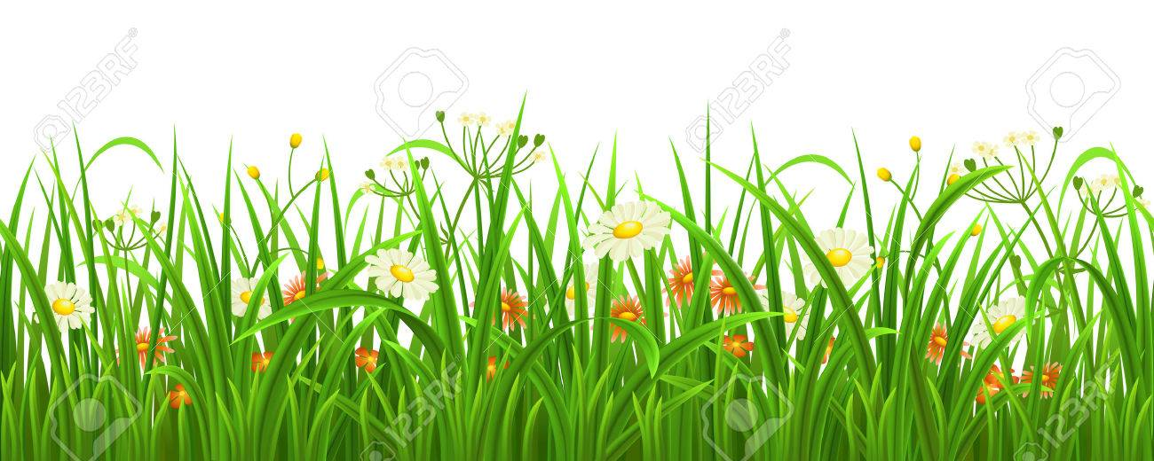 Seamless green grass with flowers, vector illustration - 37626056