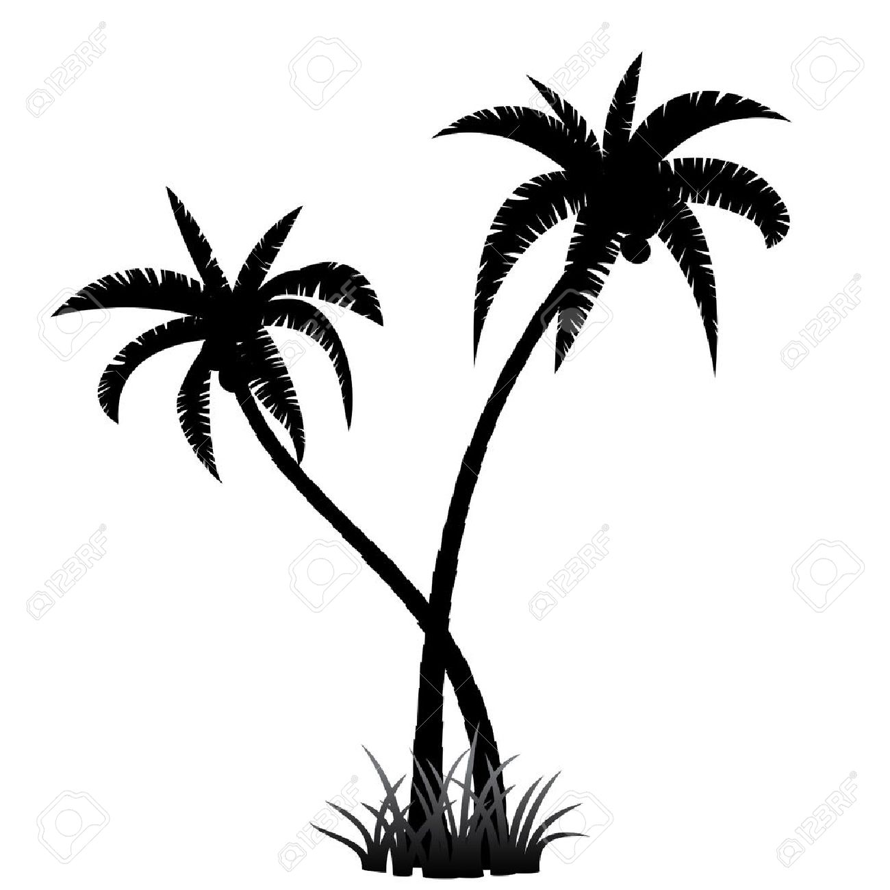 Black palm tree silhouette on white background stock vector 40812569