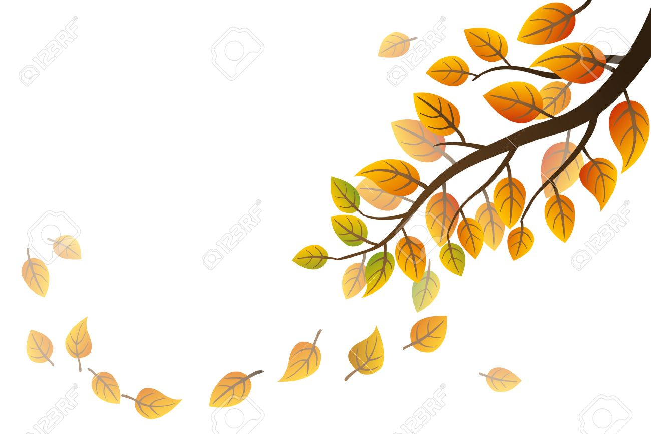 autumn branch with falling leaves on white background royalty free
