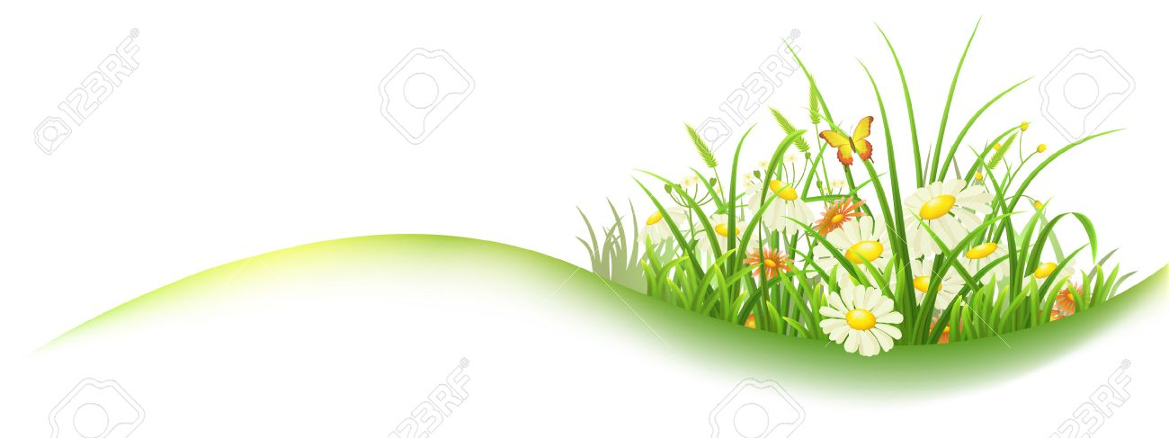 spring banner with green grass and flowers vector illustration rh 123rf com vector springs florida vector spring