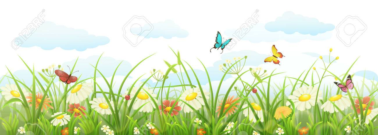 Spring Summer Banner With Green Grass Flowers And Butterflies