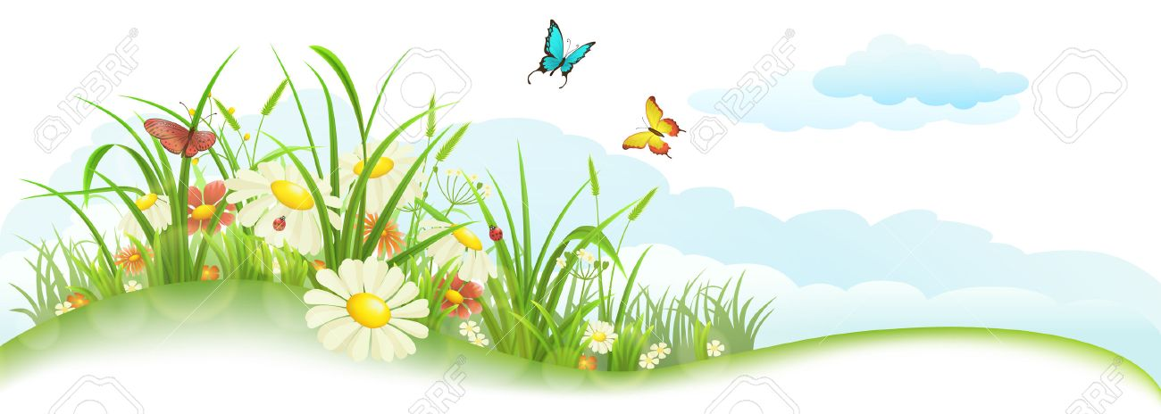 Green spring summer banner with grass, flowers, butterfly and clouds - 51571531