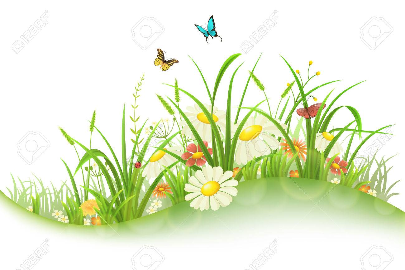 Spring summer meadow with green grass, flowers and butterflies - 52235729