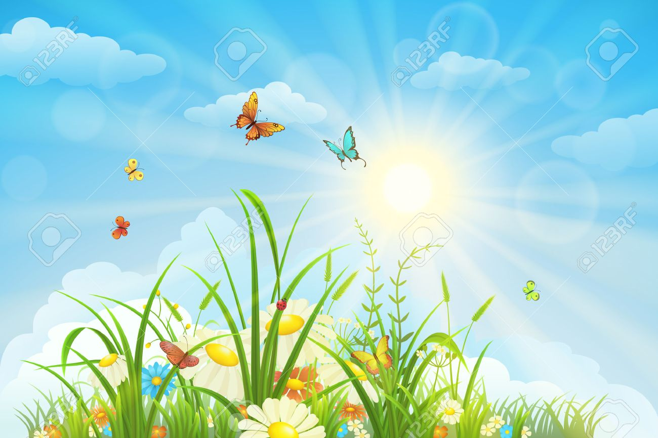 Summer and spring landscape, meadow with flowers, blue sky and butterflies - 52235917