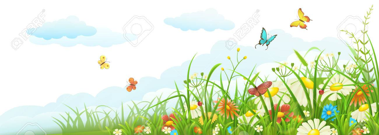 Summer meadow banner with green grass, flowers, butterflies and clouds - 53040413