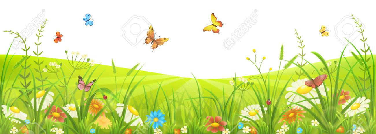 Floral summer or spring meadow with green grass, flowers and butterflies - 53040410