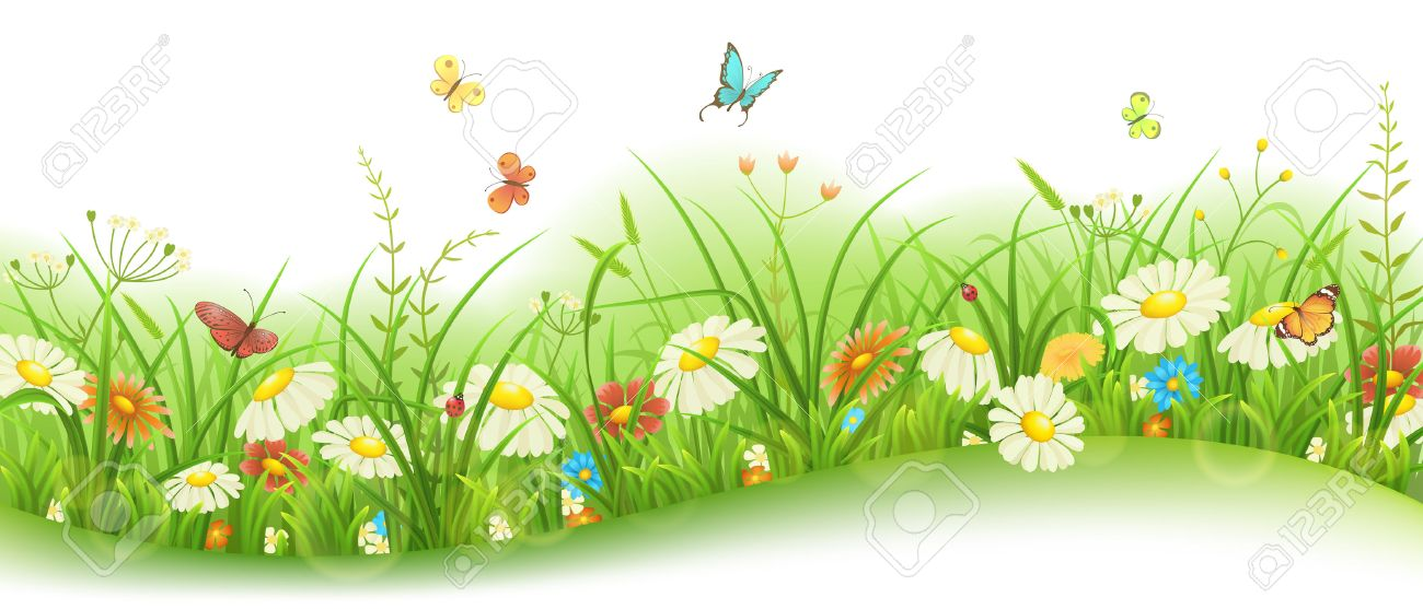 spring or summer floral banner with green grass flowers and rh 123rf com Spring Clip Art Flower Clip Art