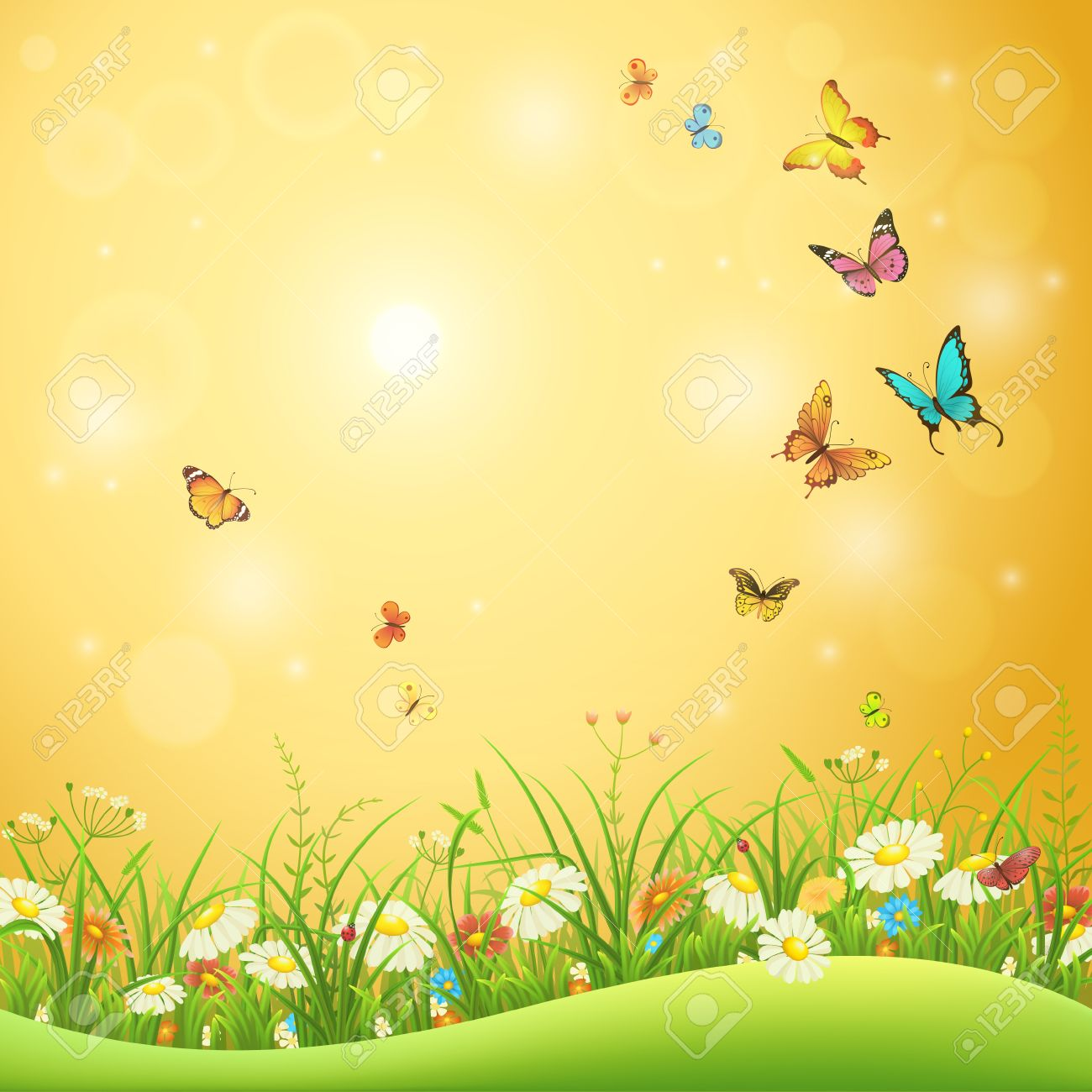 Spring or summer flowers, green grass and butterflies, nature background - 53040412
