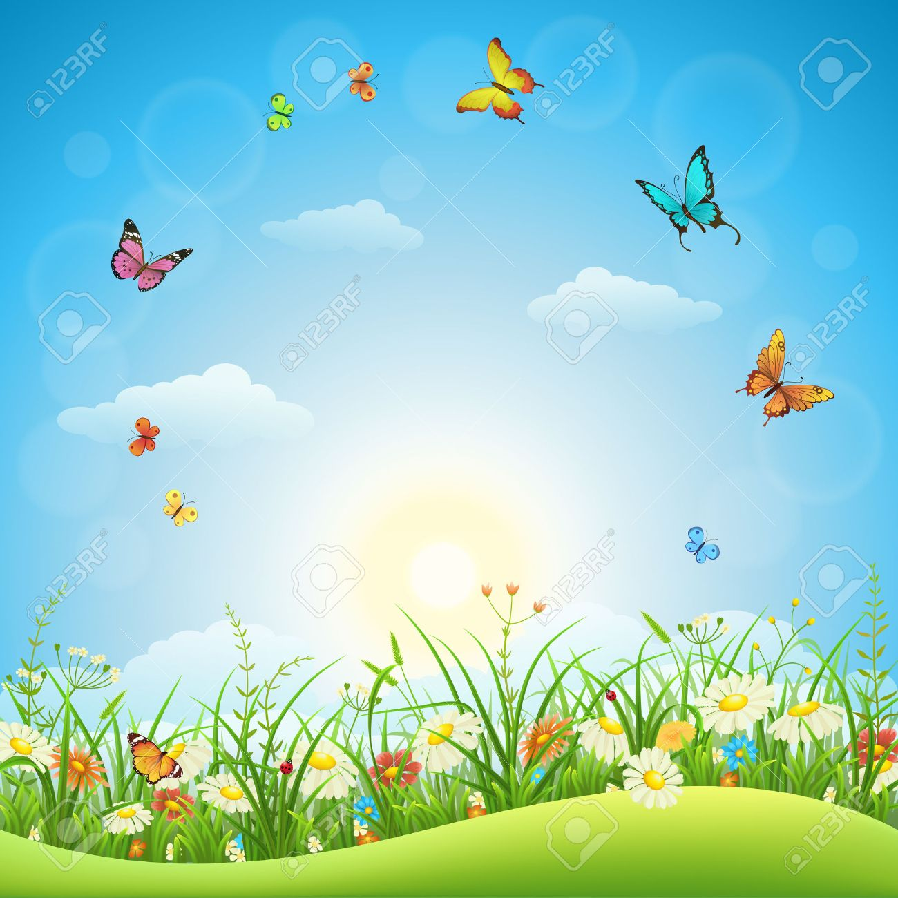 Spring or summer landscape with green grass, flowers and butterflies - 53040415