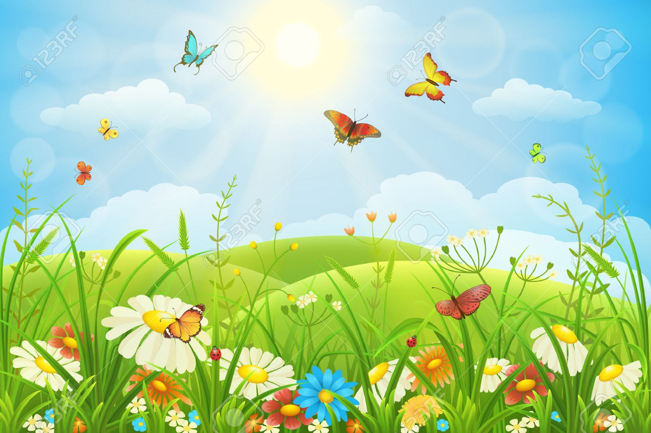 Summer or spring lush meadow with colorful flowers and butterflies - 54381602