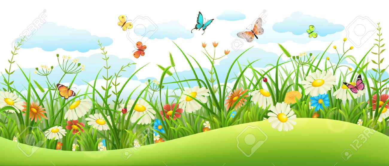 Summer landscape banner with meadow flowers, grass and butterflies - 54381605