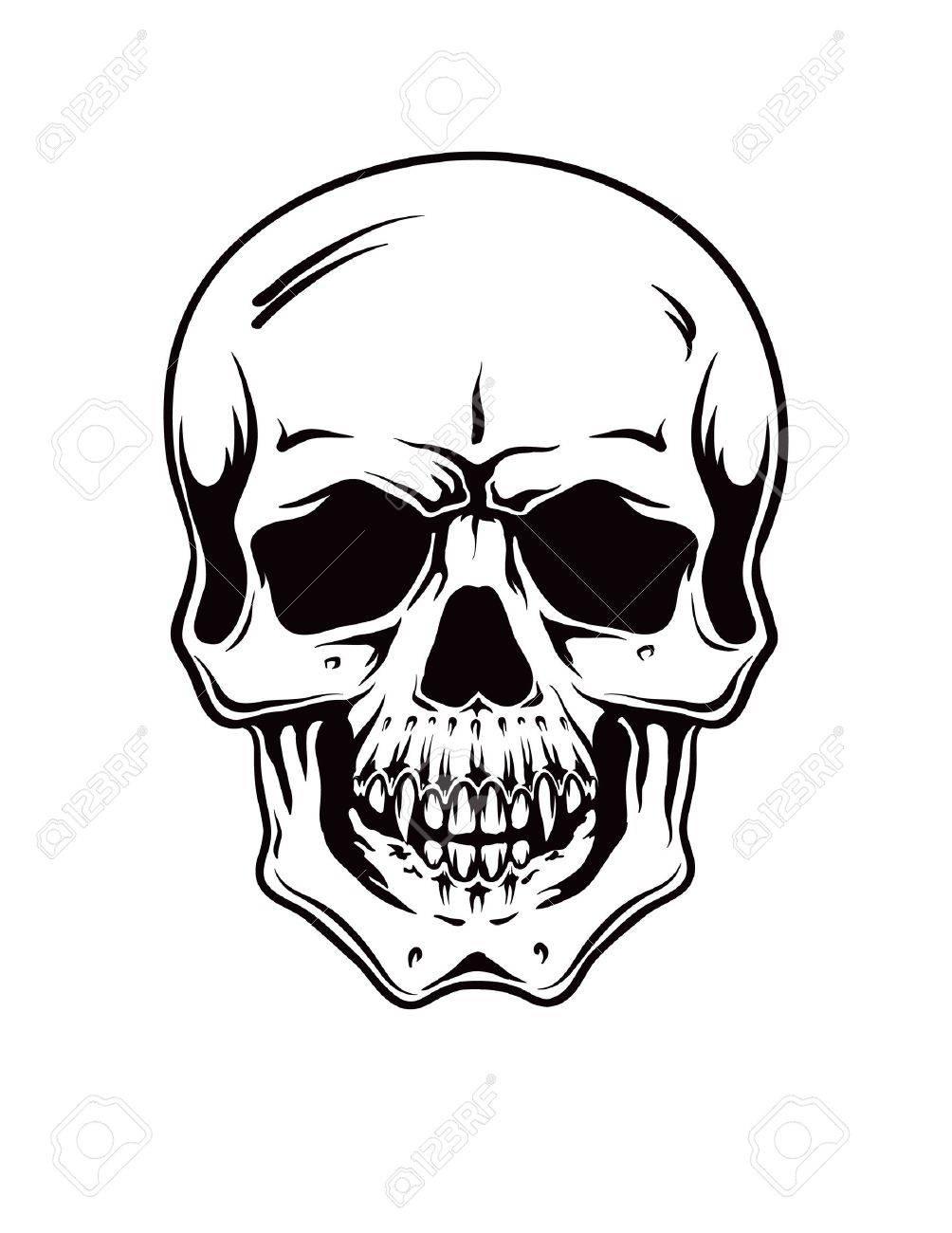 cartoon vector skull hand drawn royalty free cliparts vectors rh 123rf com vector skull head vector skull 1080 by 1080