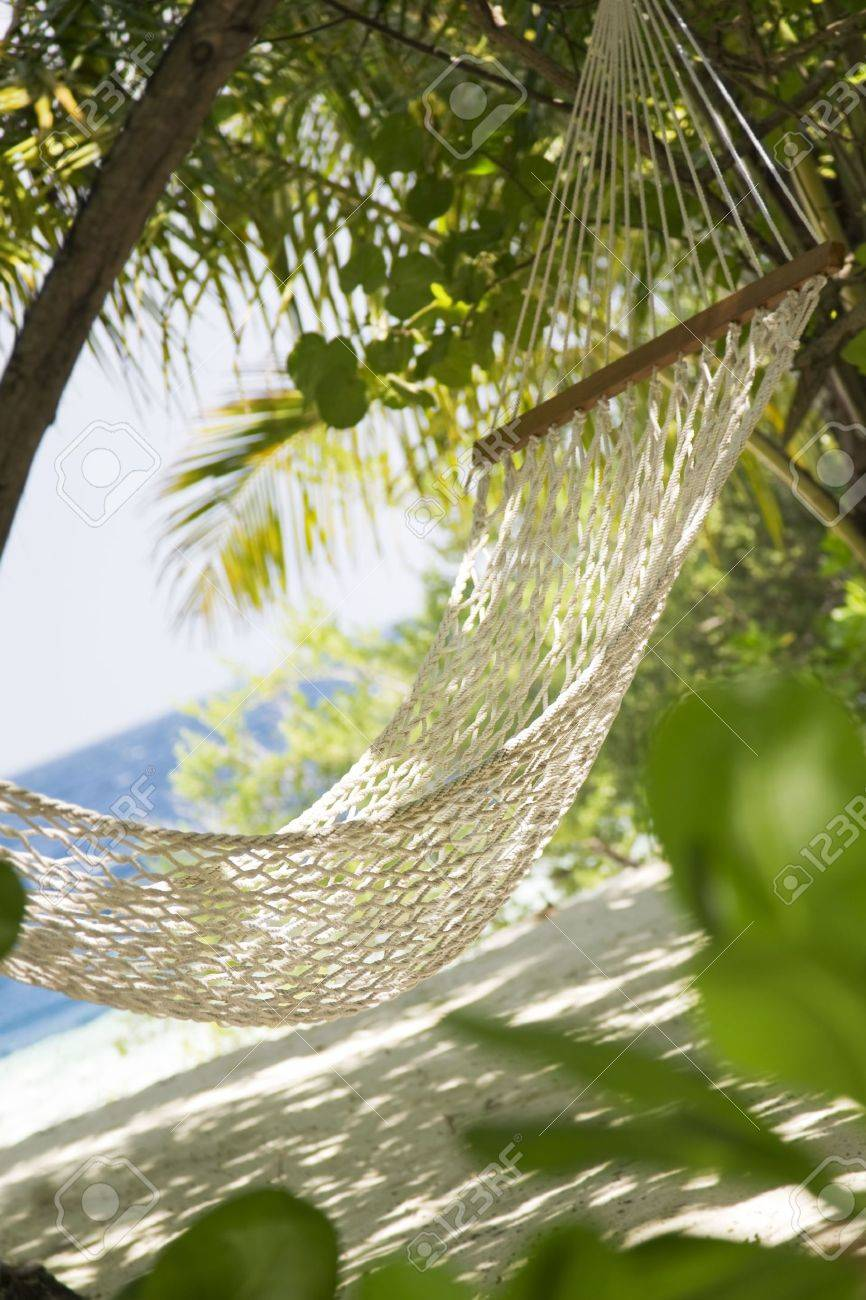 Tropical Beach: Hammock In A Garden Near The Sea Stock Photo ...